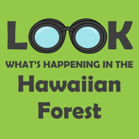 Forest Backdrop_Binocular Activity_mini graphic.pub